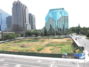 Stalled CalPERS Capitol Mall project